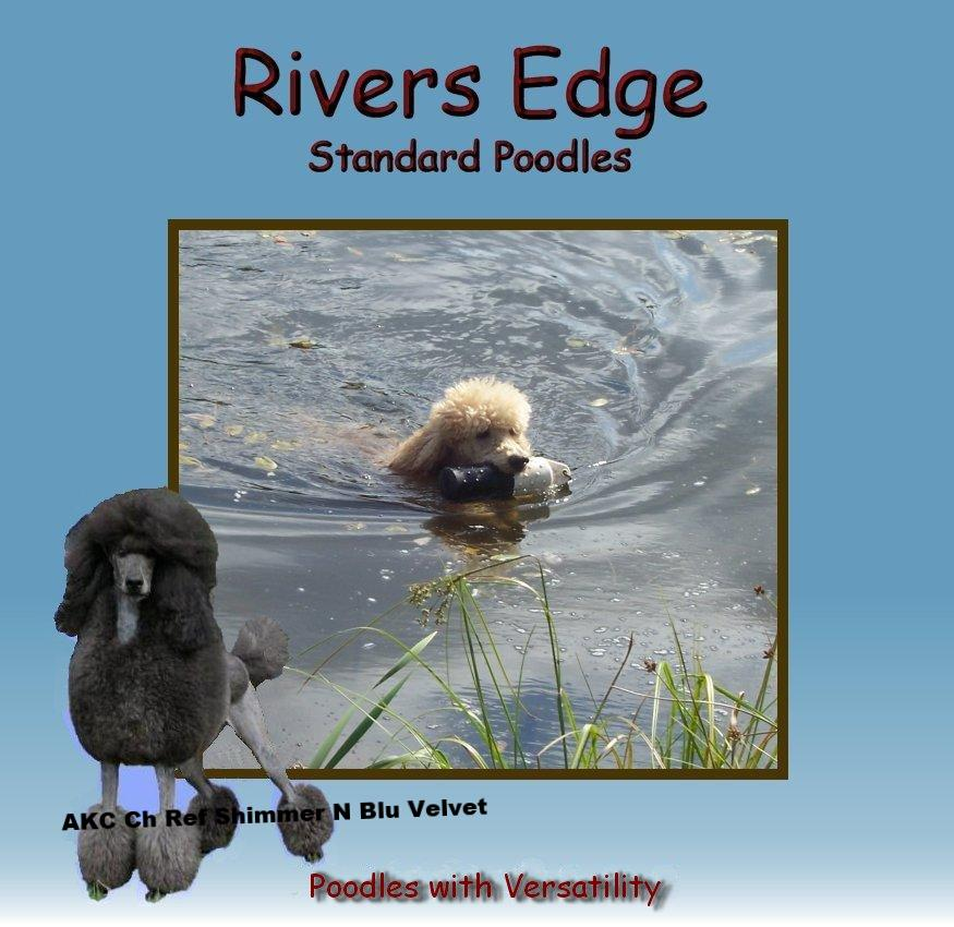 Rivers Edge Standard Poodles